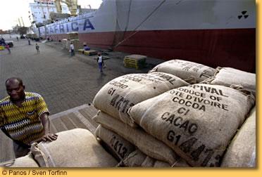 Dans l'esprit de Gbagbo (2) : Pourquoi le cacao pourrait le sauver.