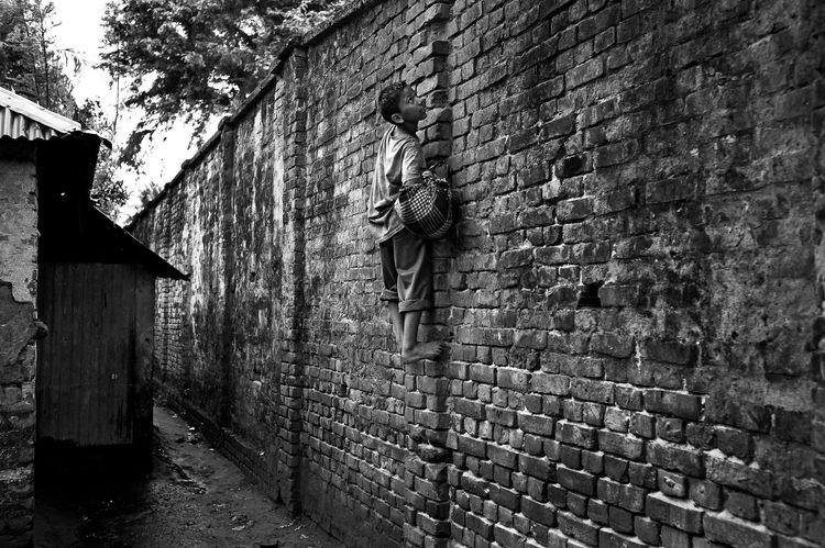 « Les hommes construisent trop de murs et pas assez de ponts » I. Newton