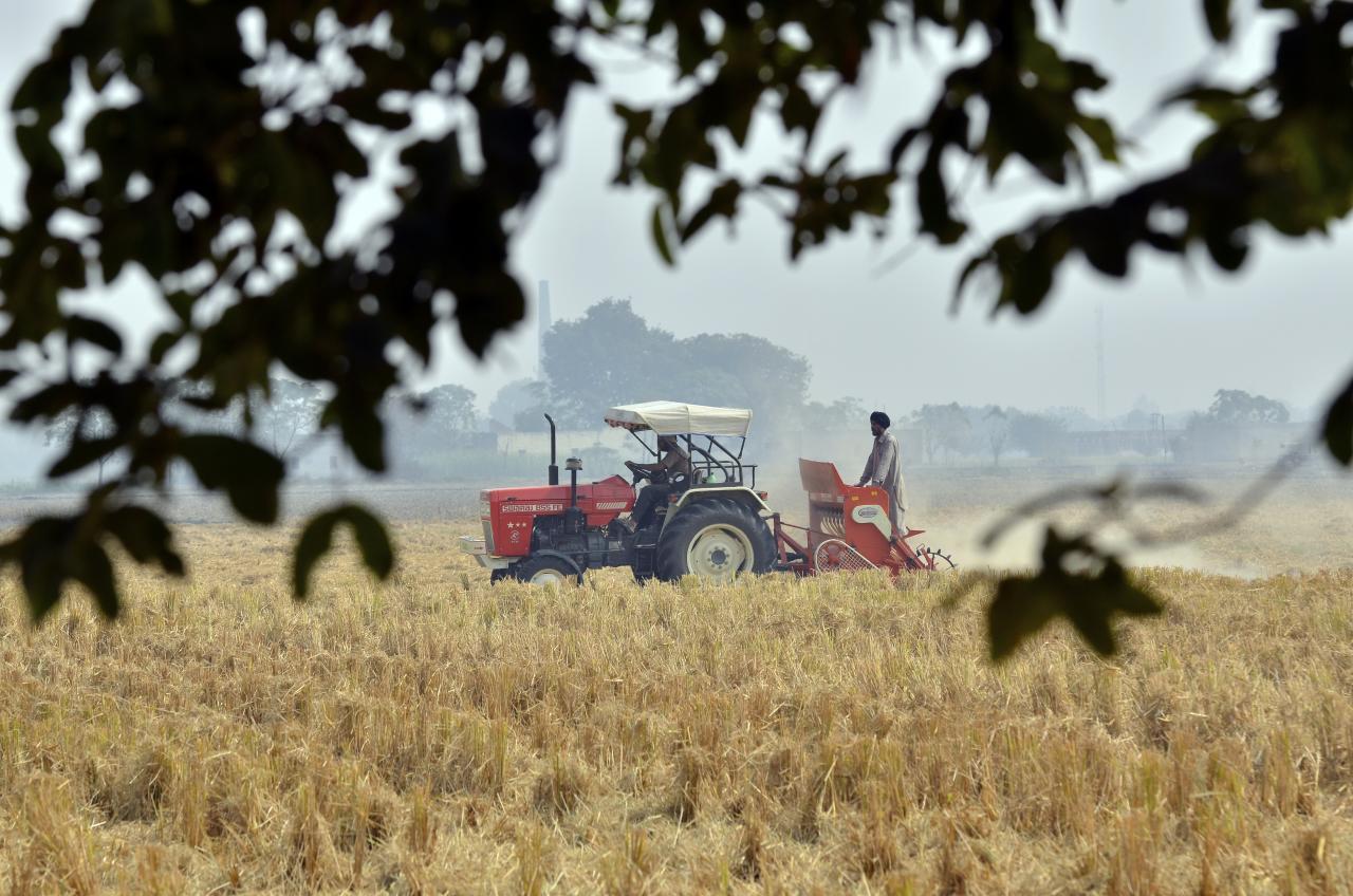 Crise agricole en Inde : un agriculteur se suicide toutes les trente minutes
