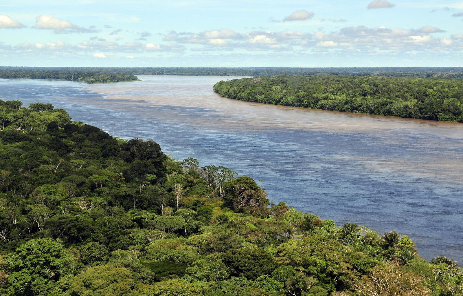 «A Amazônia é nossa» : la vision de l'Amazonie dans la pensée politique brésilienne