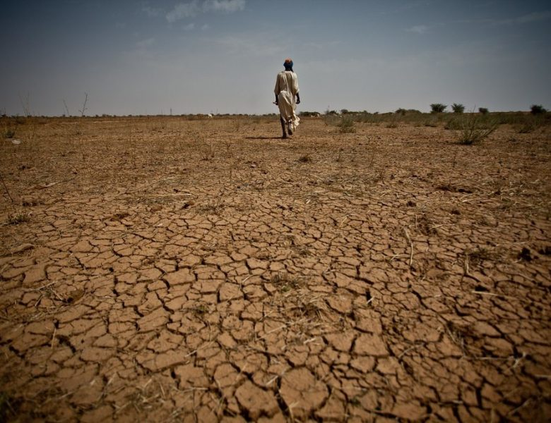 Crises au Sahel : le prisme malien