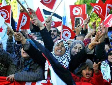 The revolution will be televised : médias et élections dans la Tunisie démocratique